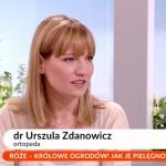 """Dr Urszula Zdanowicz w """"Pytaniu na śniadanie""""."""